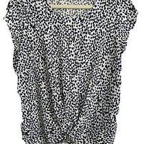 Adrianna Papell Short Sleeve Print Top Photo