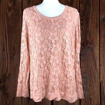 Adrianna Papell Warm Blush Womens Top Sheer Long Sleeves Floral Sheer Shirt (Xl) Photo
