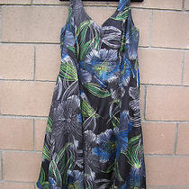Adrianna Papell Woman 18w Silk Blend Dress Black W/ Floral Bright Colors Photo