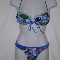 Aeropostale Blue Floral Bikini Photo