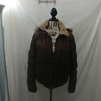 Aeropostale Brown Hooded Winter Coat Size Women's Large Photo