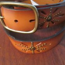 Aeropostale Brown Leather Belt Brass Studded Size Small Fits 30 to 33 New Photo