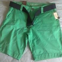 Aeropostale Men's Size 30 Flat Front Chino Classic Shorts Mint Green 100% Cotton Photo