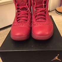 Air Jordan Shine Photo