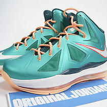 Air Nike Lebron X 10 Dolphin 5y Gs Blue Diamond Fireberry Jade Floridian 9 Ix Photo