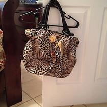Aldo Animal Print Handbag  Photo