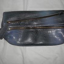 Aldo Blue Small Purse Photo