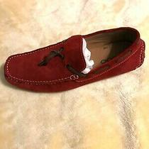 Aldo Driving Loafers Red Sz 12 Photo