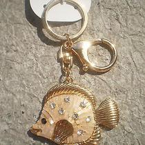 Aldo  Gold Toned  Blingy Fish Key Chain Photo