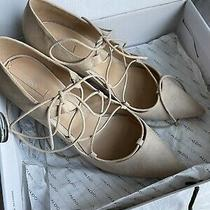 Aldo Lace Up Beige Zelica Heels Size 11 Worn Once With Box Photo