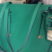 Aldo Milroy Handbag Green Photo