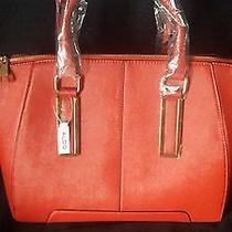 Aldo Purse Red Photo