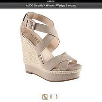 Aldo Sandals/wedges Brand New in Box Photo