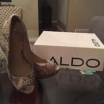 Aldo Snake Skin Tan Shoes Gently Worn- Size 8 With Box  Photo