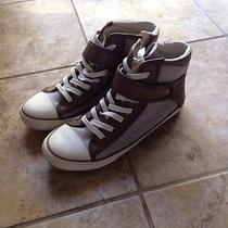 Aldo Sneakers Photo