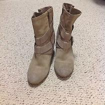 Aldo Suede Ankle Boots Photo