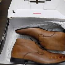 Aldo Tan Gerrawen Chucka Boots Size 9.5 Photo