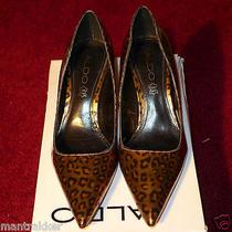 Aldo - Women's Leopard Pumps  - Size 36 Sandee Is Name of Shoe Photo