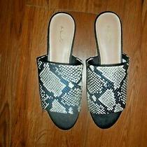 Aldo Womens Yulia Snake Print Slides Sandles Open Toe Flats - Sz 9 Photo