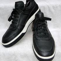 Alejandro Ingelmo Toby Low Top Sneaker Sz 10.5m Photo