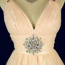 Alex & Sopkia 200 Blush Evening Prom Formal Cruise Short Cruise Dress Size 11 Photo