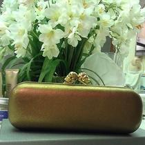 Alexander Mcqueen Clutch Photo