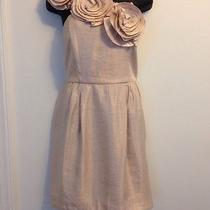 Alexia Admor Blush Dress Size M Photo