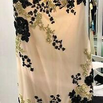 Alexia Blush Prom 2 Tone Nude Black Long Dress Size 6 See Through Bottom Bnwt Photo