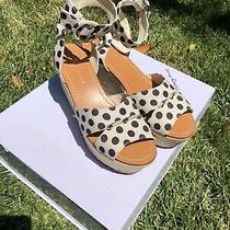 Alice  Olivia Women's 'Roberta' Cream/black Espadrille Wedge Sandal Size 38 Photo