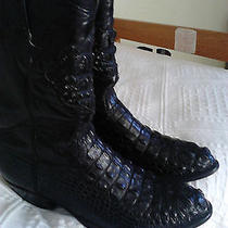 Aligator Boots Photo