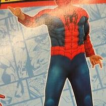 Amazing Spider-Man 2 Muscle Costume Peter Parker Size 8-10 Marvel Comics 630530 Photo