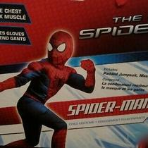 Amazing Spider-Man 2 Muscle Costume Peter Parker Sz 8-10 Includes Gloves 620384 Photo