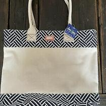 Ame & Lulu Canvas Beach 20l Panel Tote Bag Cream Blue Basket Pattern Pink Accent Photo