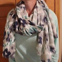 American Eagle Blue White and Gray Casual/fashion Scarf Photo