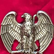 American Eagle/open Wings Photo