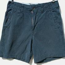 American Eagle Outfitters Blue Pinstripe Longer Length Shorts  4147 Size 28 Photo
