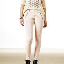 American Eagle Outfitters Blush Moto Jegging New10 Short Photo