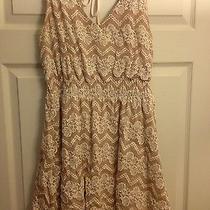 American Rag Cie Medium Dress Photo
