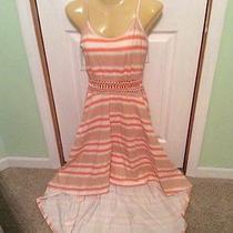 American Rag Dress Photo