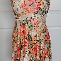 American Rag Dress Fall Floral Lace Asymmeterical Photo