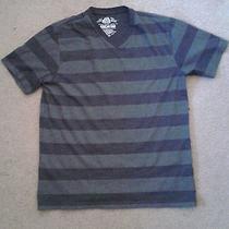 American Rag T-Shirt Photo