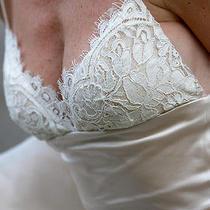 Amsale Wedding Dress (Anen)  Photo