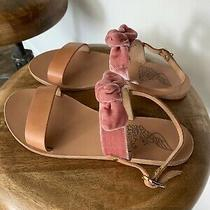 Ancient Greek Clio Velvet and Leather Sandals 39 Photo