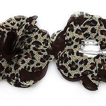 Animal Design Lane Bryant Brooch Two in One Hair Clip and Pin Charming Accessory Photo
