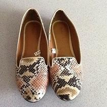 Animal Print Loafers 8.5 Photo