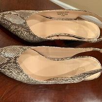 Ann Taylor Brielle Block Heel Slingback Shoes Size 8.5 M Photo