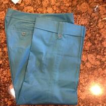 Ann Taylor Capri Photo