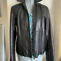 Ann Taylor Jacket Coat Zip Button Soft Dark Brown 100% Leather Gold Lining Photo
