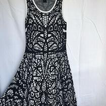 Ann Taylor Knit Dress Size Xs Lace Pattern Black and White Photo