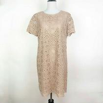 Ann Taylor Lace Overlay Shift Dress Short Sleeve Crew Neck Blush Pink Nude Sz 10 Photo